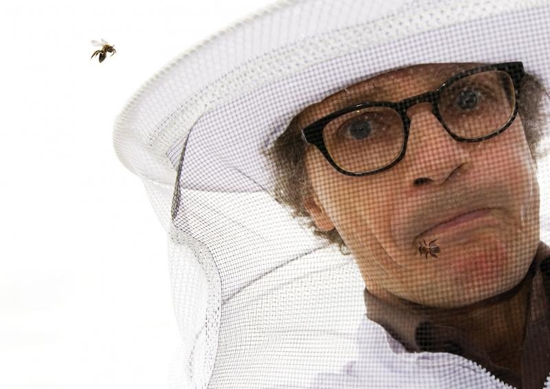 Jürg Kienberger:<br /> Ich Biene - ergo summ<br /> . Ein Bühnensolo zum Leben und Sterben der Bienen.